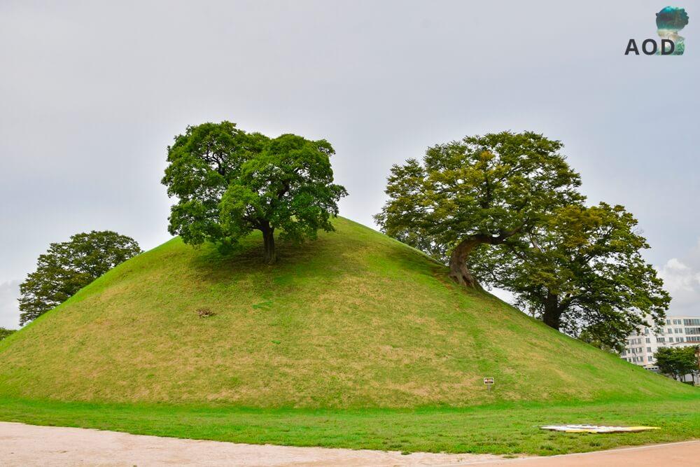 Nosedongpark - Überraschend mit Bäumen auf dem Hügelgrab.