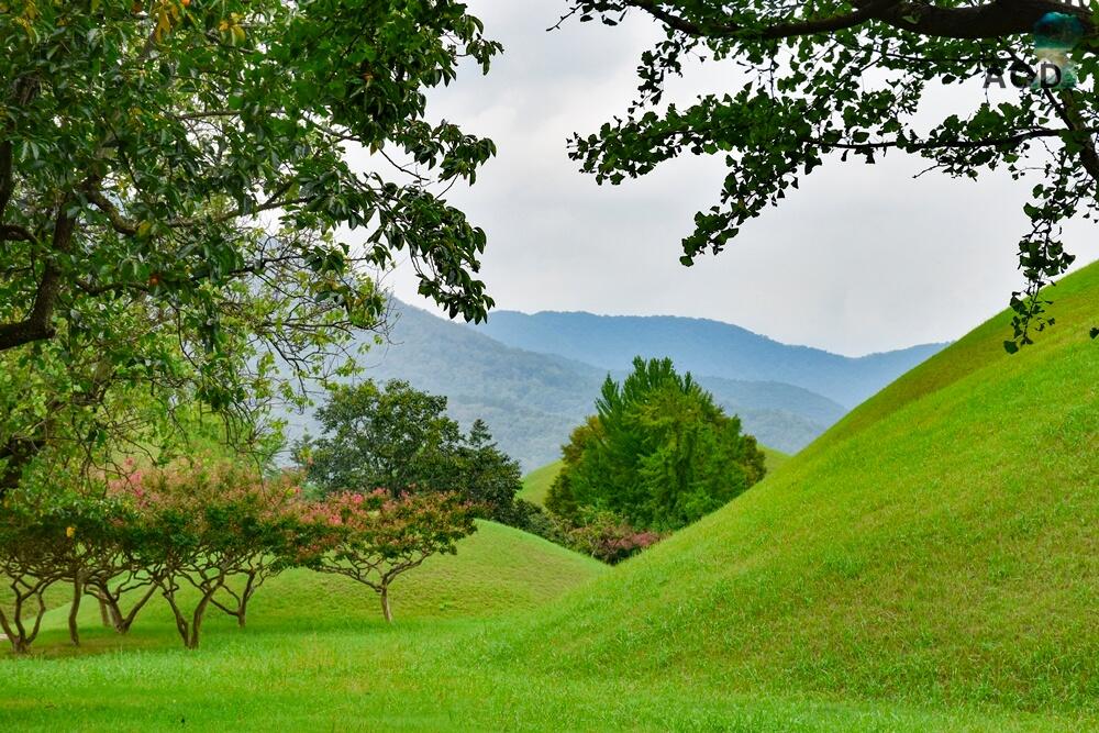 Daereungwon - Blick aus dem Park