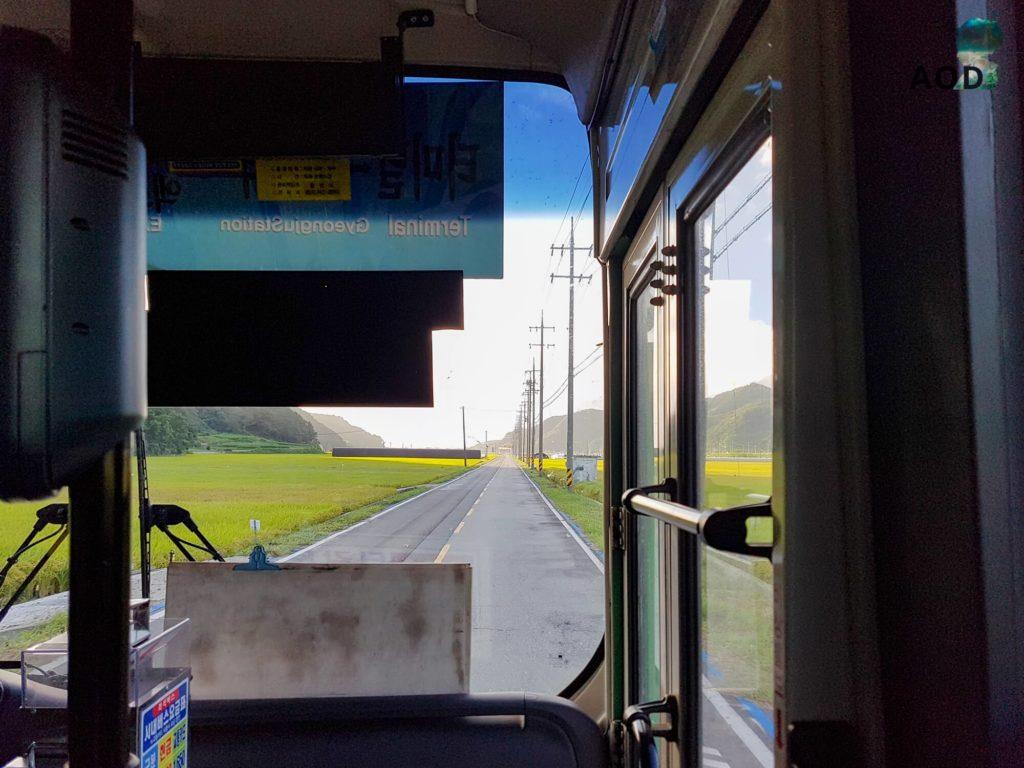 Im Bus auf dem Weg zum Grab