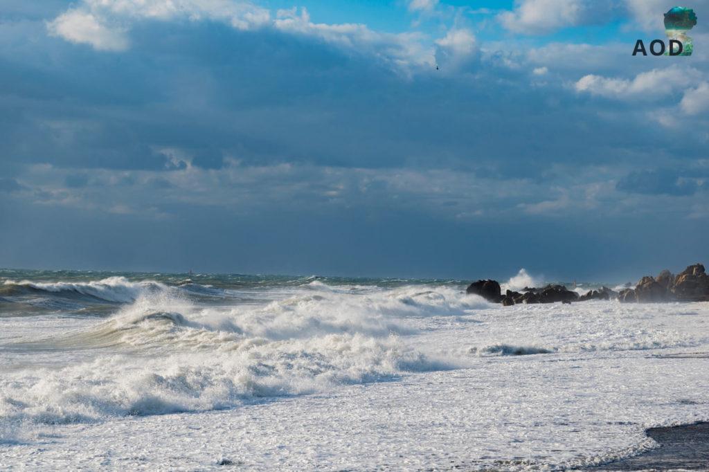 Ostwind und damit hohe Wellen - war ein toller Anblick, der mit Bildern gar nicht darzustellen war.