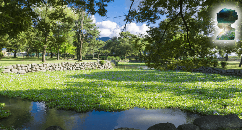 Oreung - Königgräberpark