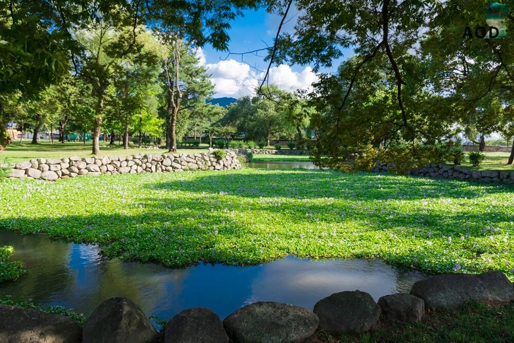 Teichanlage im Oreung - wunderschöne Ruhe